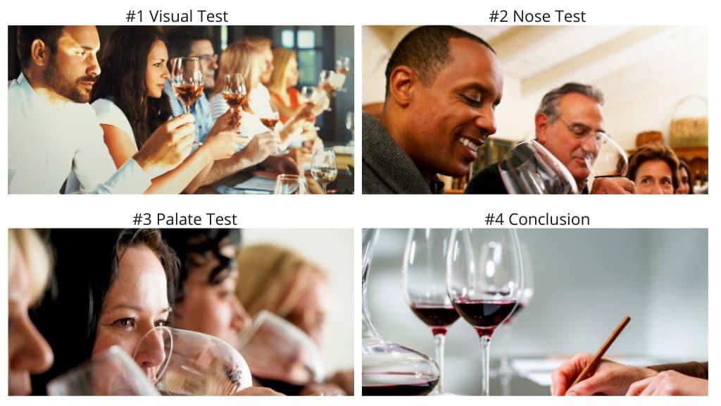 How To Taste Wine in 4 Steps